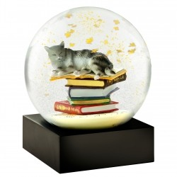 CoolSnowGlobes Cat on Books