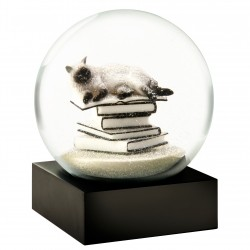 CoolSnowGlobes Cat on Books White