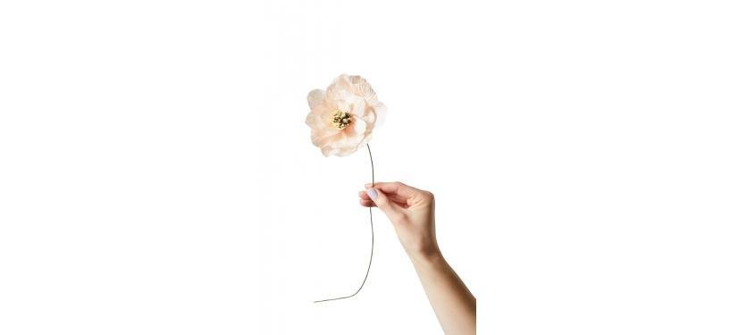 Studio About Paper Flower Poppy